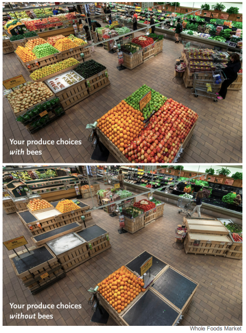 Your supermarket without bee pollination
